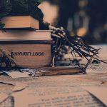 Il curriculum del lettore