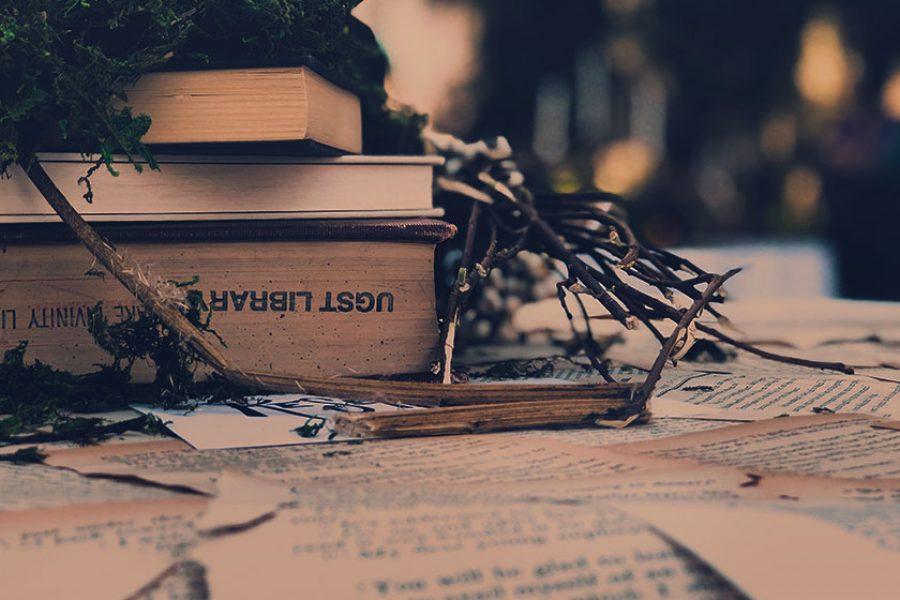 Siamo quello che leggiamo