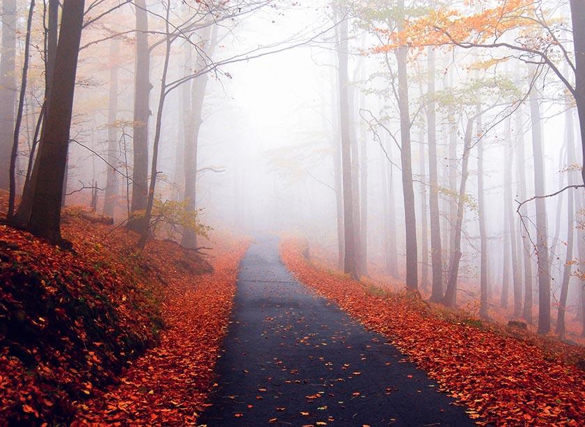 7 motivi per amare l'autunno