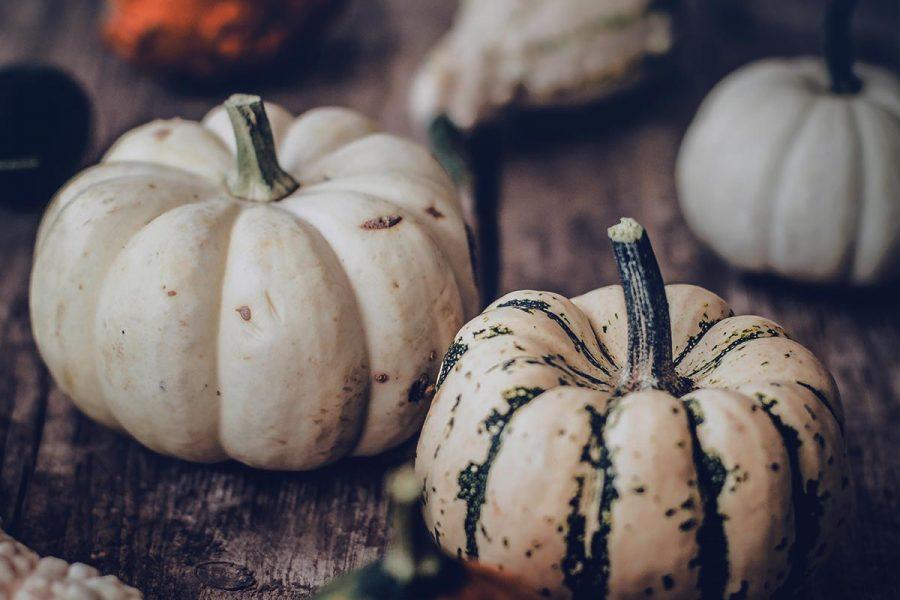 Samhain: fai spazio nel tuo business