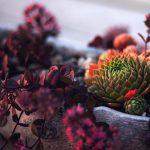 6 funzioni delle Instagram stories utili per la tua comunicazione