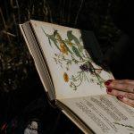 5 libri da leggere per crescere come freelance