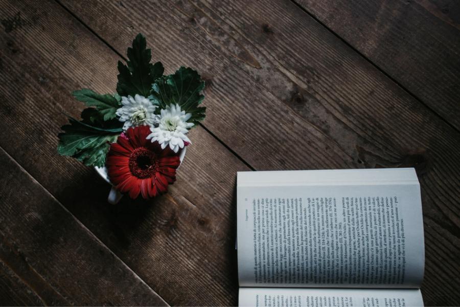 Guida alla content curation: come utilizzarla in modo etico